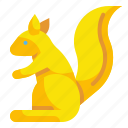 animal, rodent, squirrel, wild, zoo icon