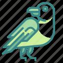 bird, crow, fear, horror, raven icon