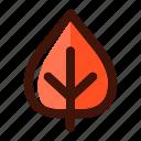 autumn, fall, foliage, leaf, leaves, plant, tree icon