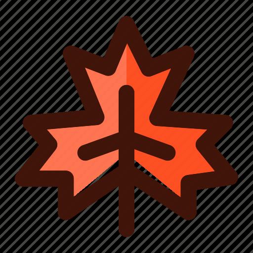 autumn, foliage, leaf, leaves, maple, nature, plant icon