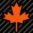 autumn, fall, leaf, maple, plant icon