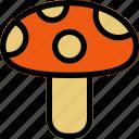 autumn, food, fungus, mushroom, wild icon