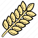 agriculture, barley, cereal, grain, wheat icon