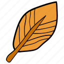 autumn, falling leaf, foliage, leaf, maple icon