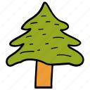 cedar, conifer tree, nature, pine tree, tree icon