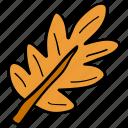 autumn, falling leaf, foliage, maple leaf, oak tree leaf icon