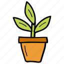 decoration, gardening, houseplant, plant, pot plant icon