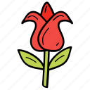flower, garden, nature, petals, tulip icon