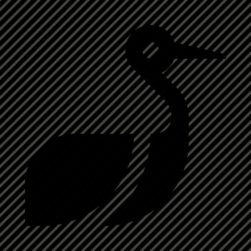animal, baby, newborn, stork icon