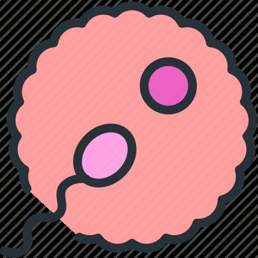 baby, sperm icon