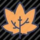 autumn, ecology, leaf, maple, nature, plant, tree icon