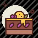 blueberry, cake, sugar, sweet icon