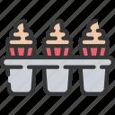 baked, baking, cakes, cooking, cupcake, tin