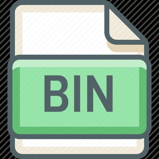 basic, bin, extension, file, format, type icon