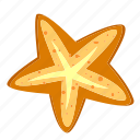 beach, marine, ocean, sea, seastar, summer, water icon