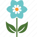floral, flower, garden, nature, plant, rose, spring icon