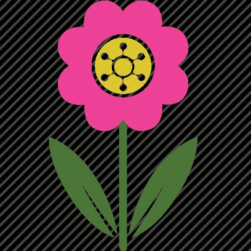 floral, flower, garden, nature, plant, rose, spring icon