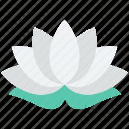 flower, lotus, lotus lily, tulip, tulip bud icon