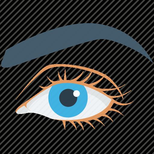 eye, eye beauty, eyebrow, face, woman eye icon