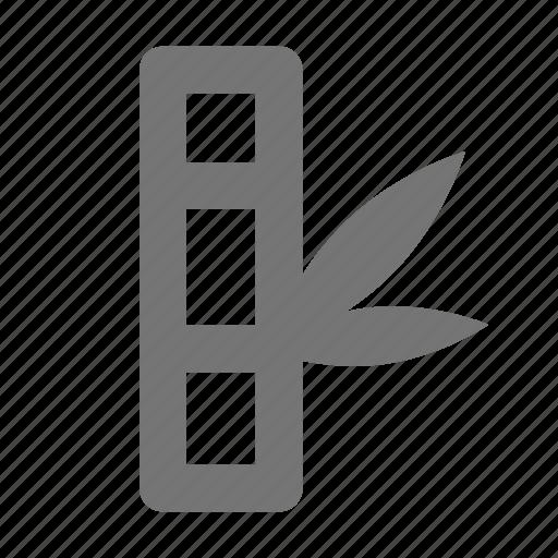 bamboo, spa icon