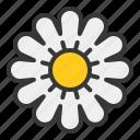 bee, farm, flora, flower, pollen icon