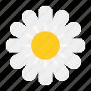 farm, flora, flower, honey, pollen icon