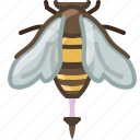 bee, beekeeping, garden, pang, sting, worker, yumminky icon