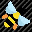apiculture, bee, beekeeping, bug, honeybee, insect, pollinator