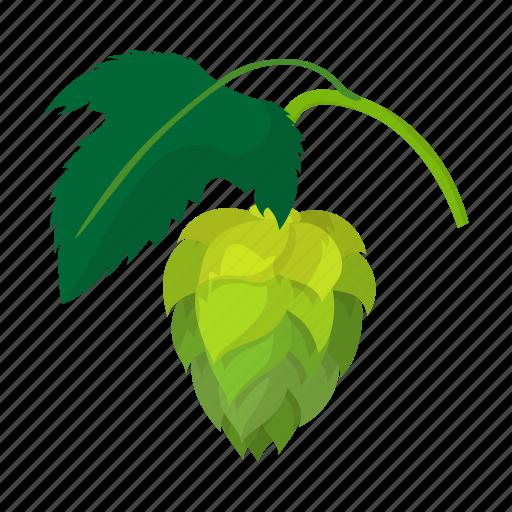 beer, botany, brew, cartoon, flavor, hop, plant icon