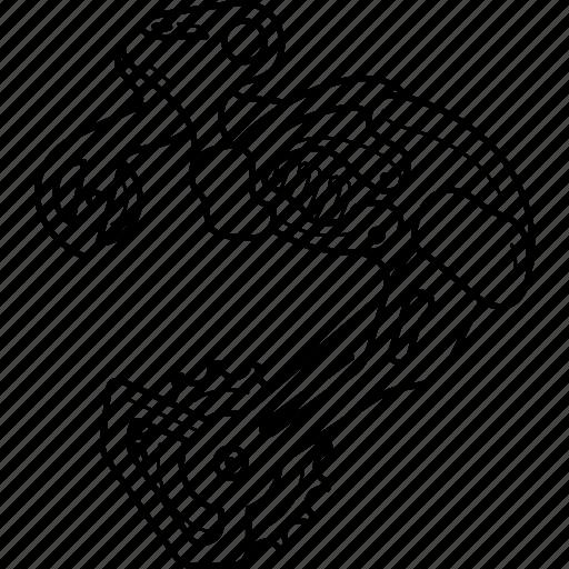 Bicycle, bike, component, derailleur, part, rear, speed icon - Download on Iconfinder
