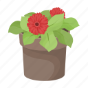 bio, ecology, flower, indoor, nature, plant, pot icon