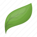 bio, eco, ecology, leaf, nature, plant icon