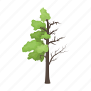 bio, damaged, eco, ecology, forest, nature, tree icon