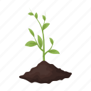 bio, eco, ecology, leaf, nature, plant, seedling icon