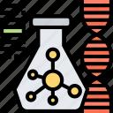 modification, analysis, genetic, dna, molecular