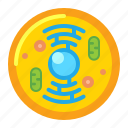 cell, germs, microbiology, viruses icon