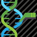 dna, engineering, genetic, science