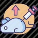 animals, genetic, genetically modified animals, lab rat, modification, rat icon