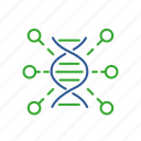bio, bioinformatics, data, function, gene, genomics, information icon