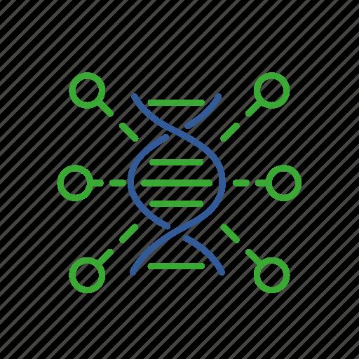 bio, bioinformatics, data, function, gene, genomics, information icon