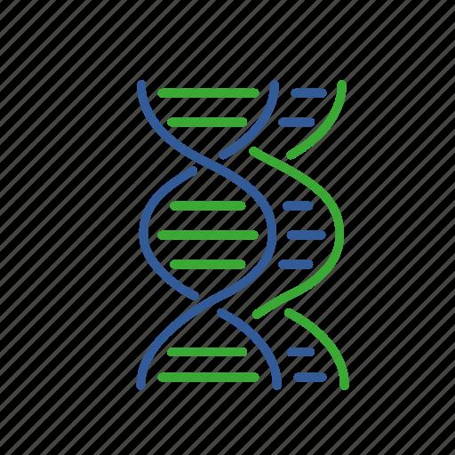comparative, dna, fusion, gene, genomic, informatics, synthesis icon