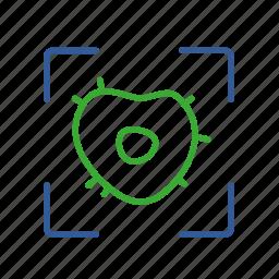 cell, define, determine, elicitation, measure, pattern, recognition icon
