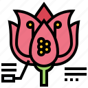 flower, morphology, ovule, pollen, reproductive icon