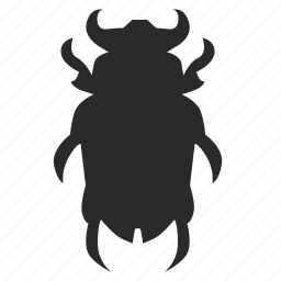 beatle, beetle, bug, insect, microbe icon