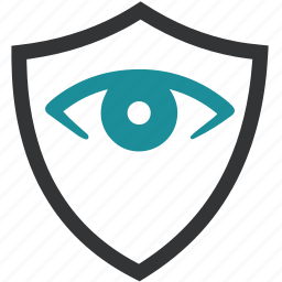 biometric, data, eye, insurence, protect, security icon