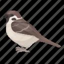 animal, bird, feathered, sparrow, wild icon