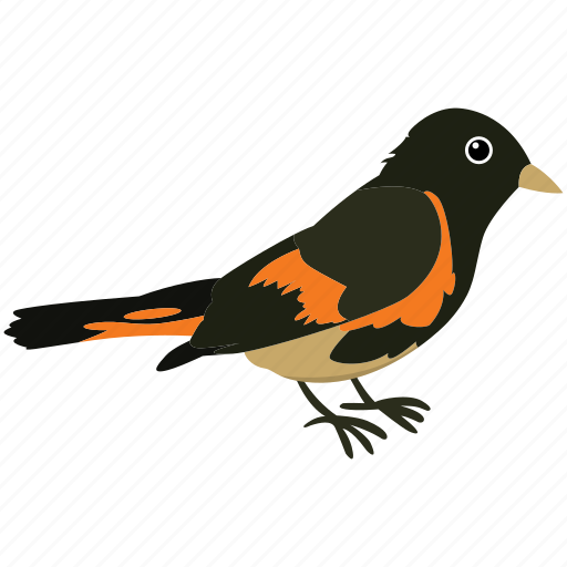 bird, colorful bird, flat bird, fly, sky, tropical bird, wing icon