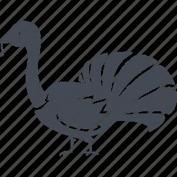 beak, bird, birds, nature, tail, turkey icon