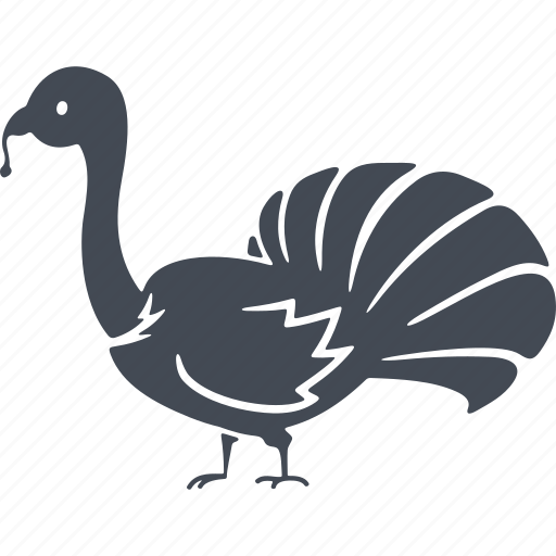 beak, bird, birds, nature, tail, turkey icon