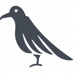 bird, birds, ecology, magpie, nature icon